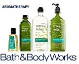 Bath & Body Works Aromatherapy Gift Set Eucalyptus Spearmint Body Lotion ~ Body Wash & Foam Bath ~ Massage Oil & Small Sanitizing Hand Gel For Sale