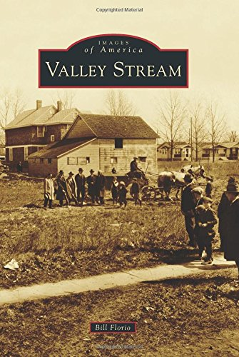 Valley Stream (Images of - Stream Mall Valley