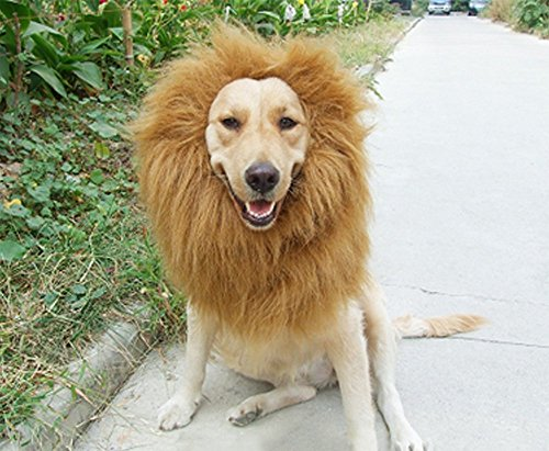 SUNREEK Large Pet Dog Cat Lion Wigs Mane Hair Festival Party Fancy Dress Clothes Costume - coolthings.us
