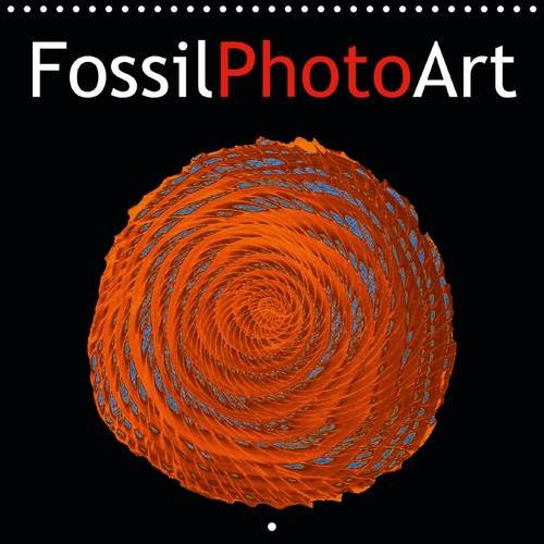 FossilPhotoArt 2016: Computer treated photos of fossil thin sections
