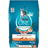 Purina ONE Natural Dry Cat Food; Tender Selects Blend With Real Chicken - 16 lb. Bag