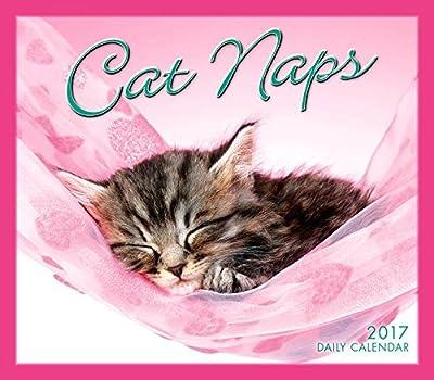 Cat Naps 2017 Boxed/Daily Calendar