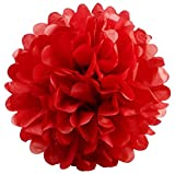 BalsaCircle 12 pcs Red 16-Inch wide Paper Pom Poms Balls - Wedding Bridal Event Birthday Party Decorations Supplies