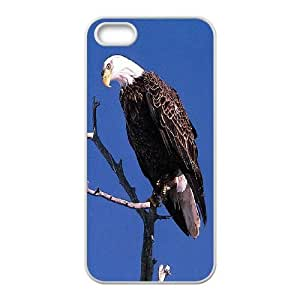 The eagle for Iphone 5/5S Phone Case OIJ398338