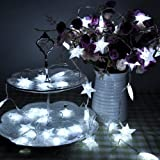 Lychee 4m 13ft 40LED Waterproof Battery Particle Five-pointed Star Operated Fairy String Lights for Outdoor Indoor Wedding Garden Home Party Christmas Decoration (White)