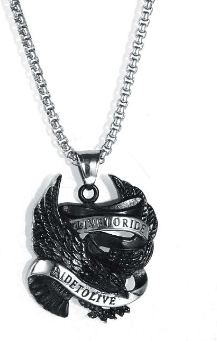 Blowin Collar De Acero Inoxidable Con Colgante De águila De Punk Para Motocicleta Cadena De 24 0 In Acero Inoxidable Bw05p201703811 Jewelry Amazon Com