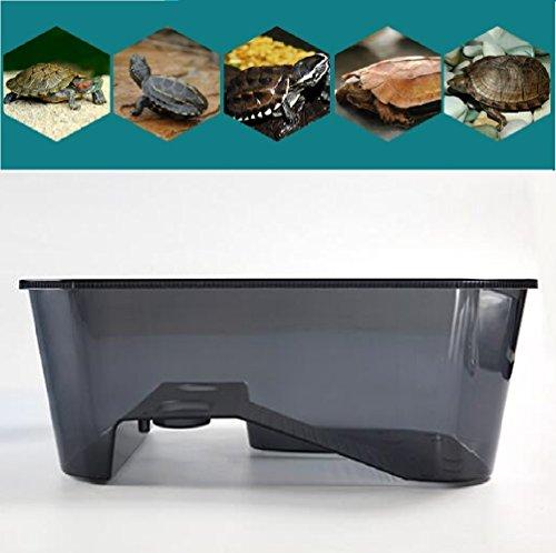 water turtle habitat kit - 9
