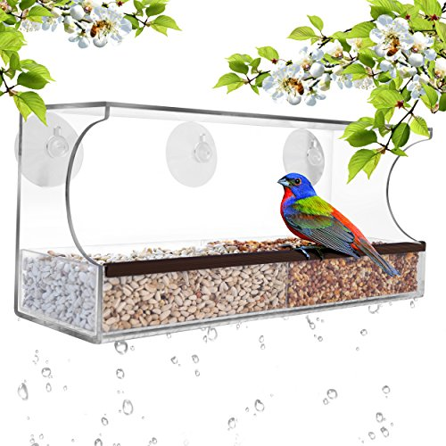 GrayBunny GB-6851 Deluxe Clear Window Bird Feeder, Large Wild Bird Feeder With Drain Holes, Removable Tray, Super Strong Suction Cups (Clear Feeder Bird Window)
