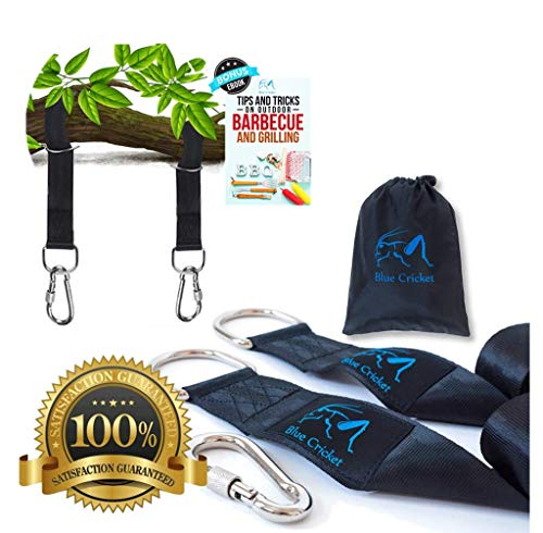 Tree Swing Hanging Straps Kit- 2 10ft Straps Hold 2200lbs + 2 Safe Secure Lock Carabiners- Hammock Hanging Kit- Perfect for Tire and Tree Swing, Hammock, Swing Straps, Carry Travel Pouch Included