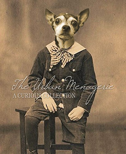 [Anthropomorphic Portrait, Chihuahua Boy Art Print, Multiple Sizes Available, Unframed] (Inanimate Object Costume)
