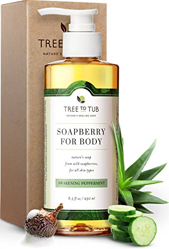 Clarifying Peppermint Body Wash by Tree to Tub - pH 5.5 Balanced, Hypoallergenic Antibacterial Body Wash with Wild Soapberries, for Sensitive, Oily or Acne Prone Skin. Vegan and Cruelty Free 8.5 oz