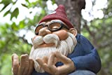 The Ohm Gnome (Smiles and Serenity for Your Home Or Garden) by Twig & Flower