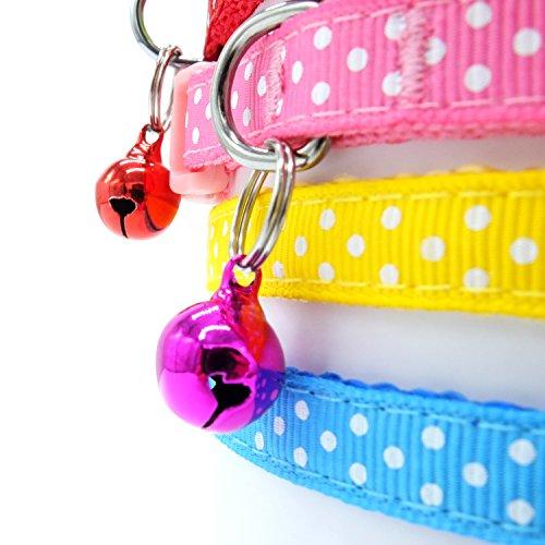 Buy cat id tag collar