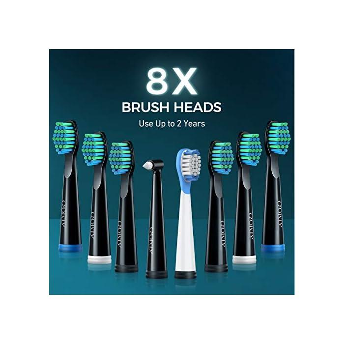 51BBSqlFhnL ALTA VIBRACIÓN DE 40000 VPM: HP126A cepillo de dientes sónico equipado con un motor motorizado líder en el mundo para generar 40,000 MICRO CEPILLOS PER MINUTE; Disolver la suciedad profunda de los dientes de manera efectiva. El efecto de limpieza 10X que el cepillo de dientes manual y 3X que el cepillo de dientes eléctrico ordinario; 7 DÍAS para blanquear los dientes y 14 DÍAS para dientes más saludables 5 MODOS DE CEPILLADO OPCIONALES: El modo BLANQUEO ayuda a blanquear los dientes mediante el uso de hasta 40,000 VPM; LIMPIEZA puede eliminar 10 veces más manchas a lo largo de la encía; SENSIBLE está diseñado para el nuevo usuario del cepillo de dientes electricos; MASAJE mejora la salud de las encías al proporcionar micro-explosiones relajantes en los tejidos para mejorar la circulación PULIDO ayuda a los dientes brillantes usando frecuencias invertidas para eliminar las manchas superficiales 8 * CABEZALES DE CEPILLO 3D DURAN 2 AÑOS: HP126A cepillo de dientes sonic viene con 8 cabezales de recambio diseñados por la compañía DuPont - Un líder mundial en el campo de la calidad y la ciencia de los materiales; Cada cabezal de cepillo dura hasta 3 meses, por lo que será más de 2 años para 8 en total; El cepillo está diseñado de forma 3D y los cabezales pueden adaptarse perfectamente a las encías y la topografía de los dientes, son fáciles de alcanzar profundamente entre los dientes