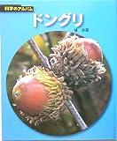ドングリ (科学のアルバム)
