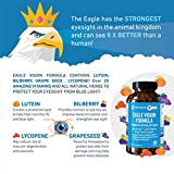 Eagle Vision Formula - 24 Minerals Food Blends, Max Strength – Lutein + Bilberry + Grape Seed + Lycopene | Support Eyesight