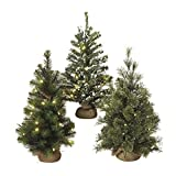 Country Lighted Burlap Wrapped Christmas Tree - 24-in Battery Operated LED Lights (Set of 3 (1 of each style))