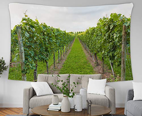 Jacrane Jaipur Handloom Tapestry Wall Hanging Tapestries with 80x60 Inches Wine Fields in Germany Easter Art Tapestry for Dorm Bedroom Living Room Home Decor ()