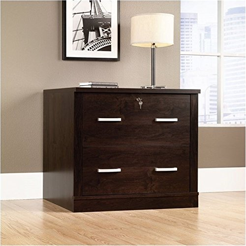 Bowery Hill 2 Drawer File Cabinet in Dark Alder