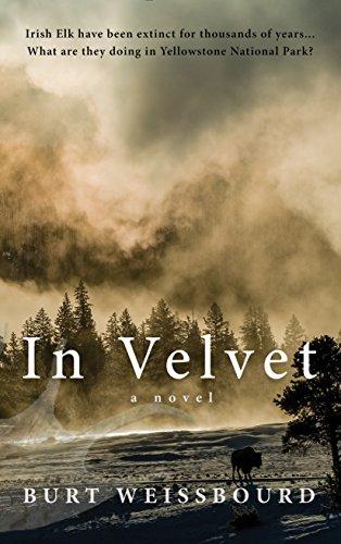 In Velvet: A Novel