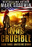 United We Stand: A Post-Apocalyptic Novel of America's Coming Civil War (Ava's Crucible Book 3)