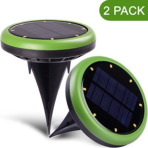 Dollar Tree Solar Lamps in Florida - 1