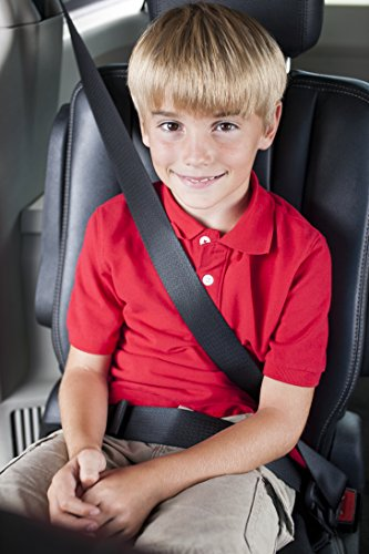 Safety 1st Incognito Positioning Seat, Black