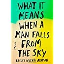 What It Means When a Man Falls from the Sky: Stories