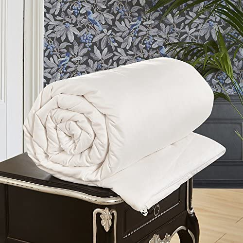 LilySilk All Season Luxury Silk Comforter with Cotton Covered 100% Silk Duvet Queen 87x90 Inches