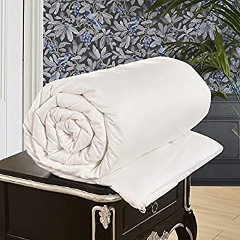 LILYSILK All Season Silk Comforter with Cotton Covered 100% Silk Duvet Queen 87x90 Inches