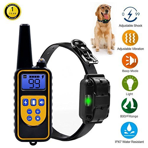 Training Collar Accessories (Pet Accessories Worldwide Dog Training Shock Collar with Rechargeable Remote, 875 yards Range with Beep Vibration, Waterproof for 3 dogs, All dogs and puppies Sizes Small Medium and Large by)