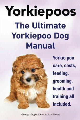 Yorkie Poos The Yorkie Poo Dog Manual Yorkiepoo Care Feeding