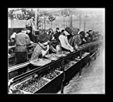 8 x 10 All Wood Framed Photo Ford_Assembly_Line_-_1913