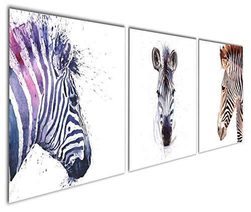 Zebra Series - 6