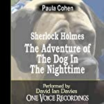 Sherlock Holmes and the Dog in the Nighttime | Paula Cohen