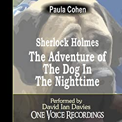 Sherlock Holmes and the Dog in the Nighttime