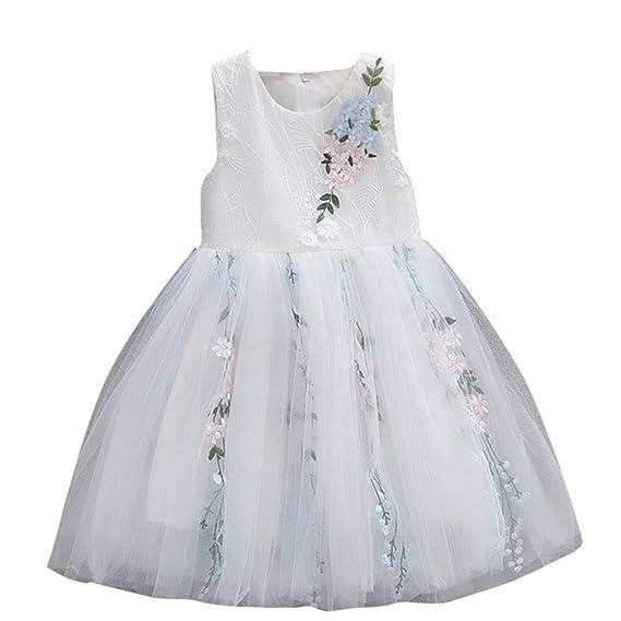 Ropa Bebe Niña, Zolimx Vestidos Verano Bebe Niña Casual Estampado Floral Sin Mangas con Falda de Tul para Niñas Mini Vestidos de Fiesta Princesa: Amazon.es: ...