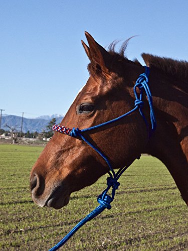 Lead Cowboy (Kensington Protective Products Rope Halter Set with Cowboy Lead)
