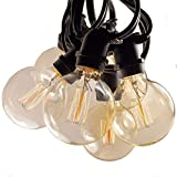 Hometown Evolution, Inc. Edison Bulb Filament String Lights (Commercial 25 Foot Black Wire, G60 Lantern Edison)