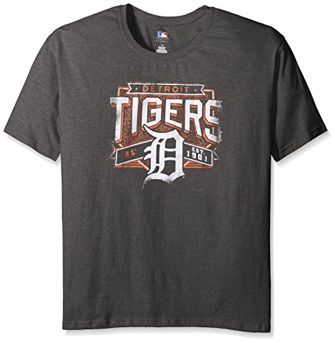 MLB Detroit Tigers Women's Team Short Sleeved Screen T-Shirt, 1X, Charcoal/Heather