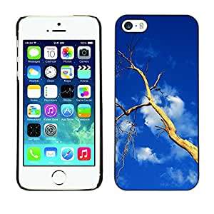 Hot Style Cell Phone PC Hard Case Cover // M00108770 Tree Dead Old Perch Birds Trunk // Apple iPhone 5 5S 5G