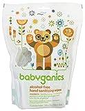 Babyganics Alcohol-Free Hand Sanitizing Wipes, Mandarin, 75 On-The-Go wipes, Packaging May Vary