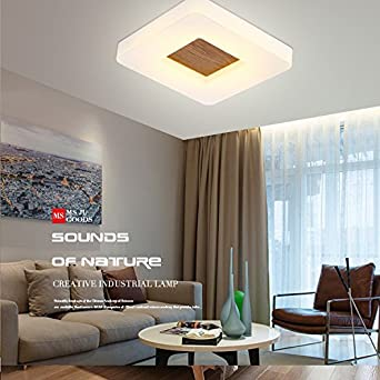 XPENGY Lámpara de techo Luz de techo moderno minimalista ...
