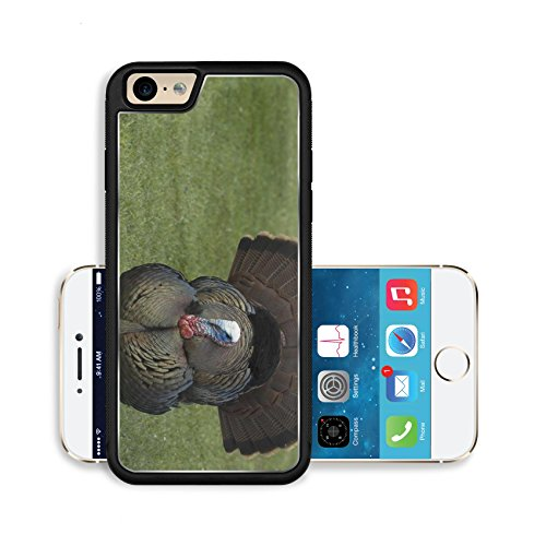 Luxlady Premium Apple iPhone 6 iPhone 6S Aluminium Snap Case Wild male turkey strutting in the spring IMAGE ID 3008463