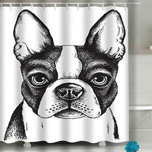 (Zhizhangshpoing Shower Curtain Boston Terrier face Black White Vector Sketch 60 x 72 Inches)