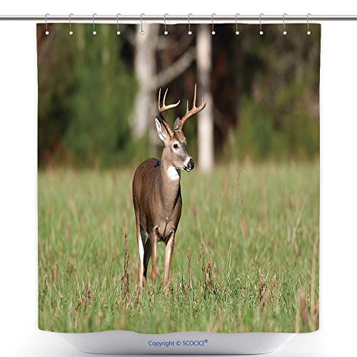 Deer Mounted Costume Halloween (Mildew Resistant Shower Curtains Whitetail Deer Buck Standing In An Open Meadow 58178854 Polyester Bathroom Shower Curtain Set With)