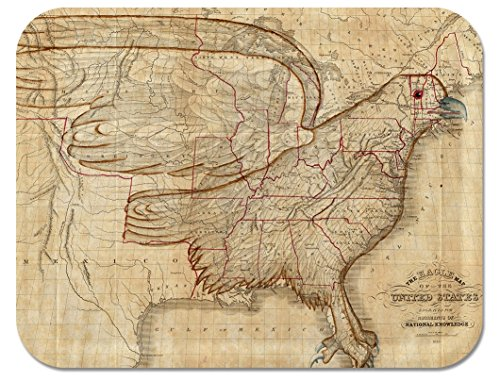 Trays4Us Patriotic Eagle Map of US 1833 16x12 inches (Large) Map Serving Tray - 70+ Different Designs