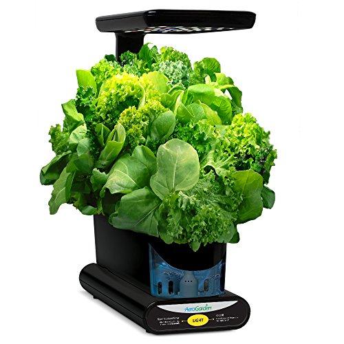 51BCwW5q0%2BL - Miracle-Gro AeroGarden Heirloom Salad Greens Seed Pod Kit
