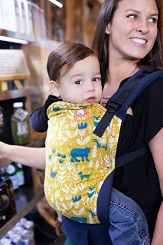 Tula Ergonomic Carrier, Fable-Standard Size(Baby), 15-45 Pounds (Best Baby Carrier For 20 Lbs)
