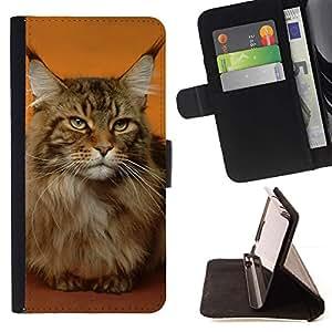 Momo Phone Case / Flip Funda de Cuero Case Cover - Maine Coon Gato Orange House Pet; - Huawei Ascend P8 (Not for P8 Lite)